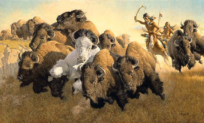 In Pursuit of the White Buffalo, by Frank C. McCarthy ANNIVERSARY EDITION