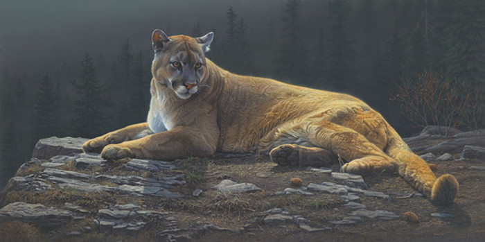 Radiant Repose, by Daniel Smith LIMITED EDITION CANVAS