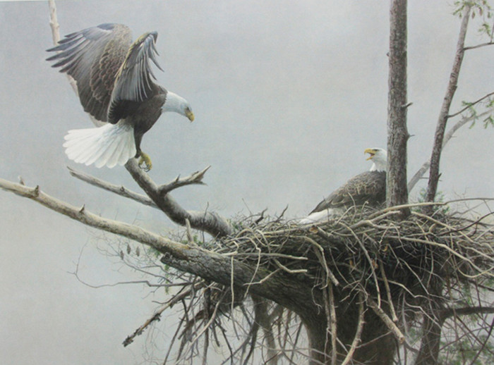 The Return Bald Eagle by Robert Bateman