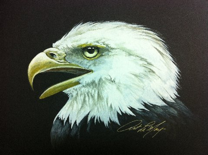 Bald Eagle original watercolor by Art LaMay