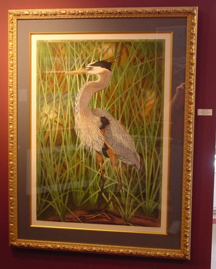 Great Blue Heron John Costin Etching, Framed