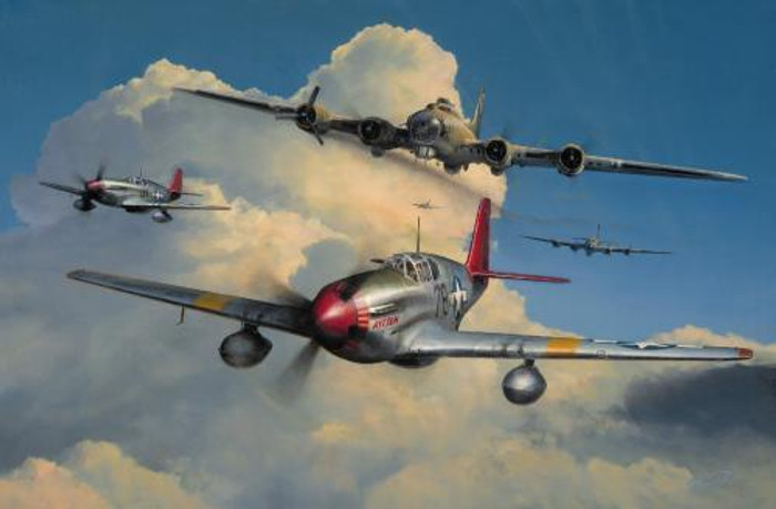 Red Tail Escort by Richard Taylor
