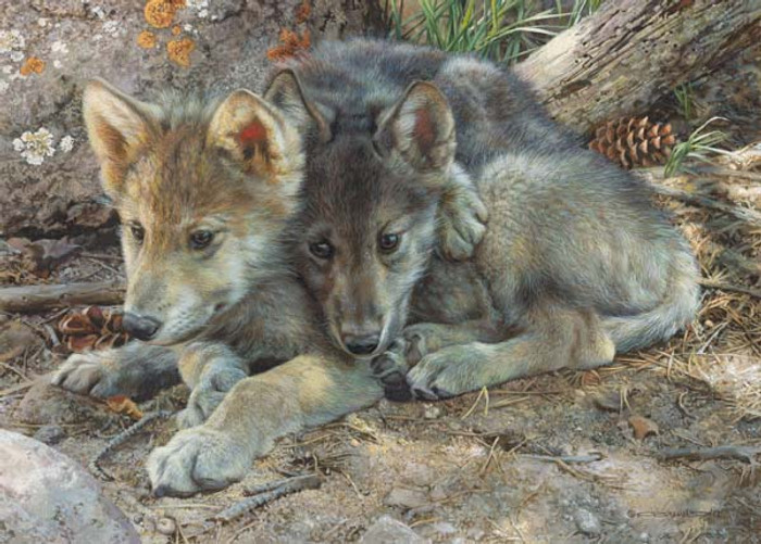 Wolf-pups