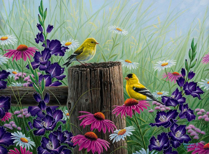 Goldfinch Meadow