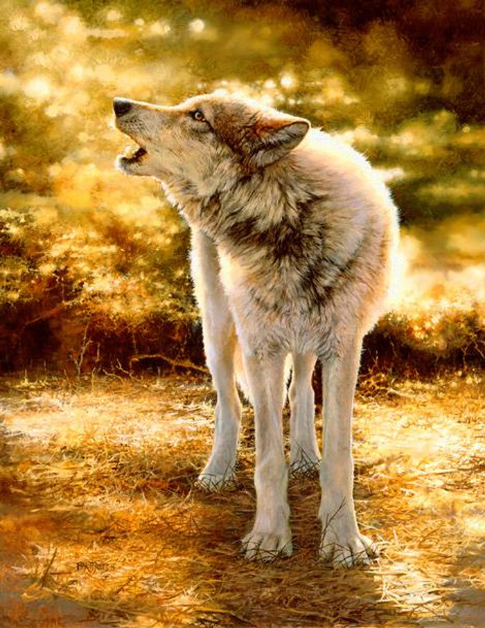 WOLFSONG, Bonnie Marris LIMITED EDITION PRINT