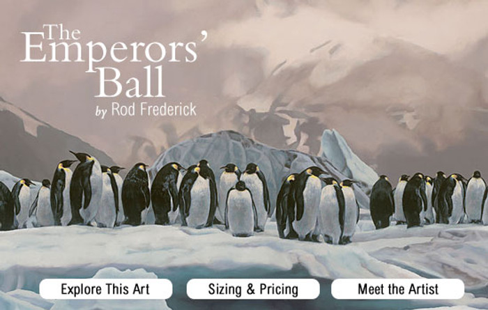 The Emperors - Penguin Ball promo