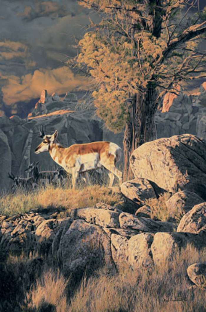 On the Canyon Rim, Rod Frederick   LIMITED EDITION CANVAS