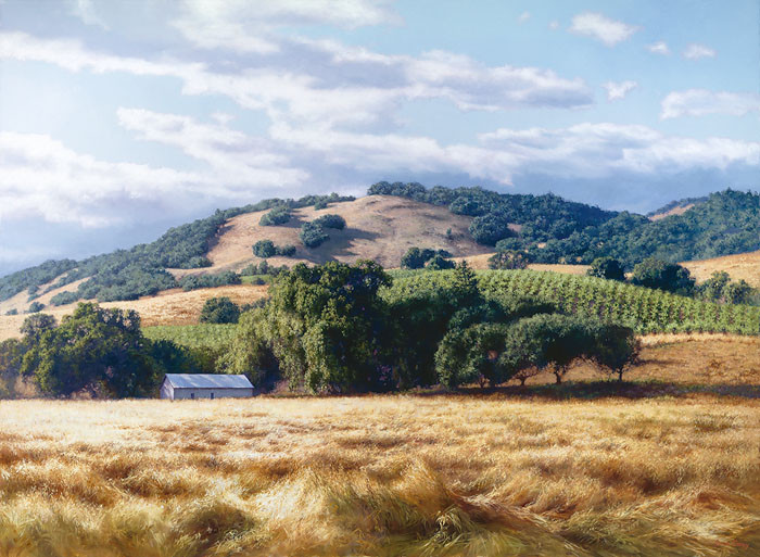 California Wine Country, June Carey  LIMITED EDITION CANVAS