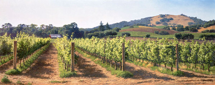 Vineyard Before the Harvest, June Carey  MASTERWORK CANVAS EDITION