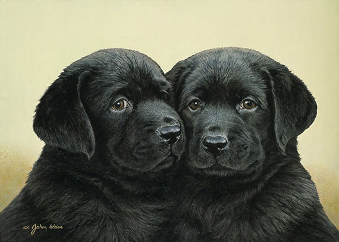 DOUBLE TROUBLE, John Weiss LIMITED EDITION PRINT