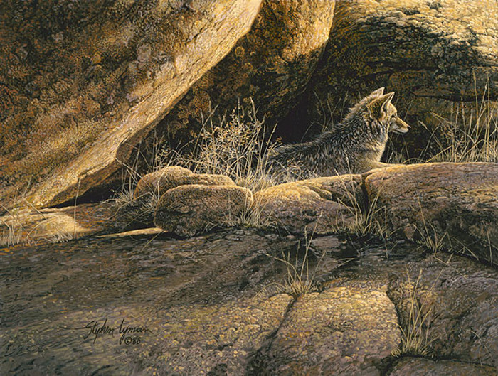 Coyote Afternoon, Stephen Lyman SMALLWORK CANVAS EDITION