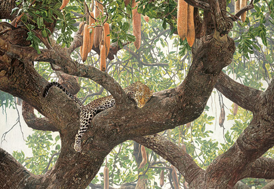 Leopard Lounge, by Guy Combes LIMITED EDITION CANVAS