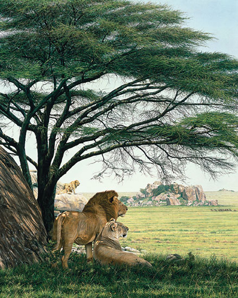 An African Experience, by Simon Combes MASTERWORK CANVAS EDITION