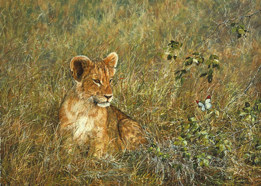 Lion Cub and Butterfly, by Simon Combes SMALLWORK CANVAS EDITION