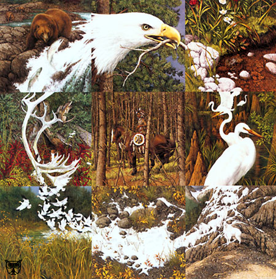 THE SACRED CIRCLE P.C & VIDEO, by Bev Doolittle LIMITED EDITION PRINT