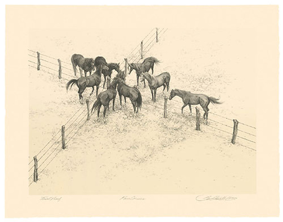 Four Corners, by Bev Doolittle ORIGINAL LITHOGRAPH