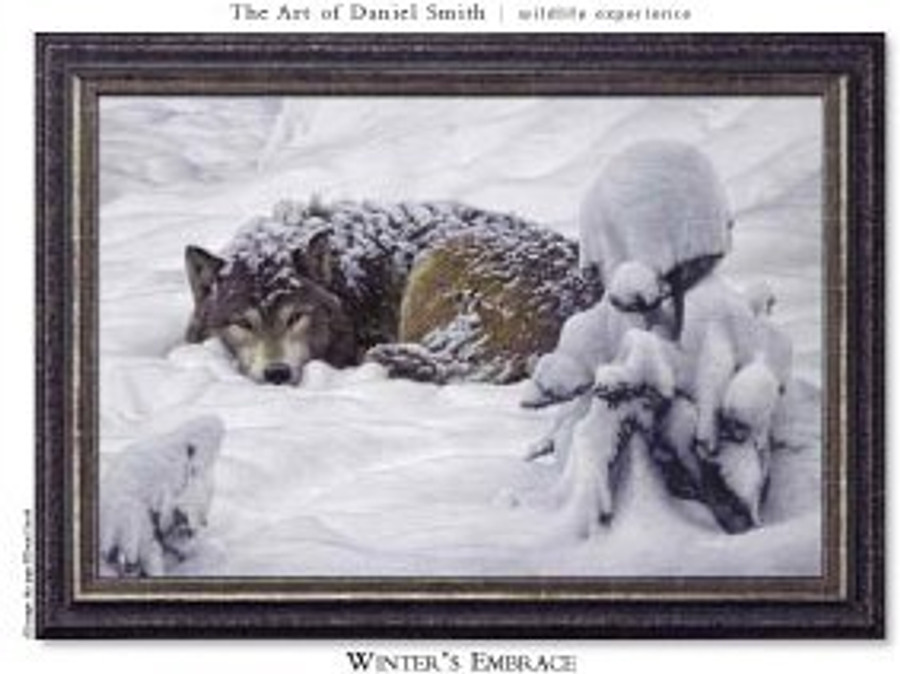 Winter's Embrace - Wolf framed