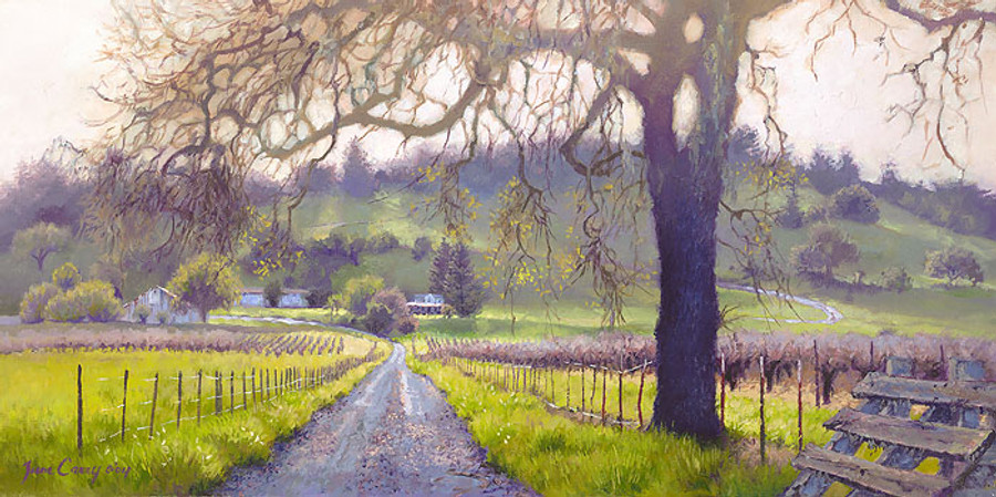 Early Spring Sonoma Valley