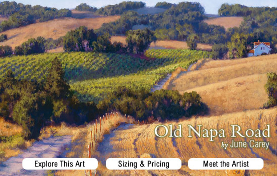 Old Napa Road by June Carey - Framed