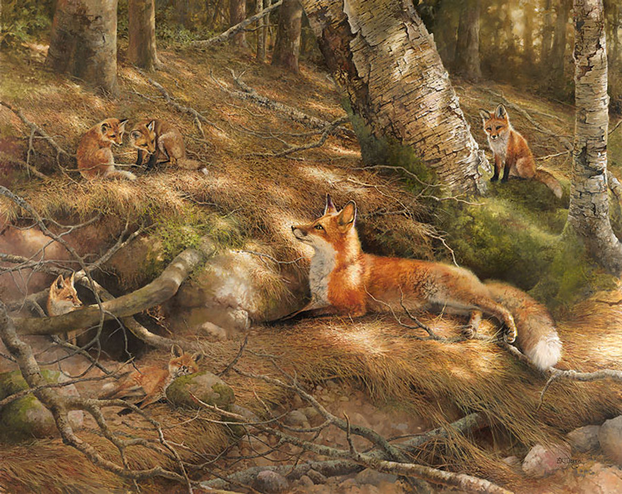 Undivided Attention - Fox Family
