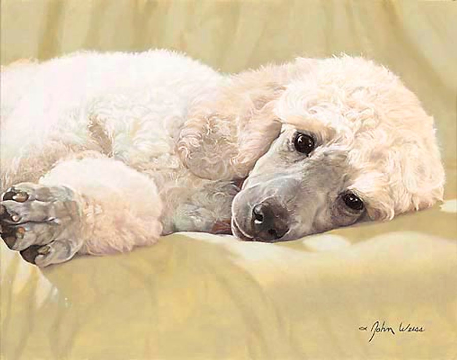 BEST LOVED BREEDS: WHITE STANDARD POODLE, John Weiss L. E. PRINT