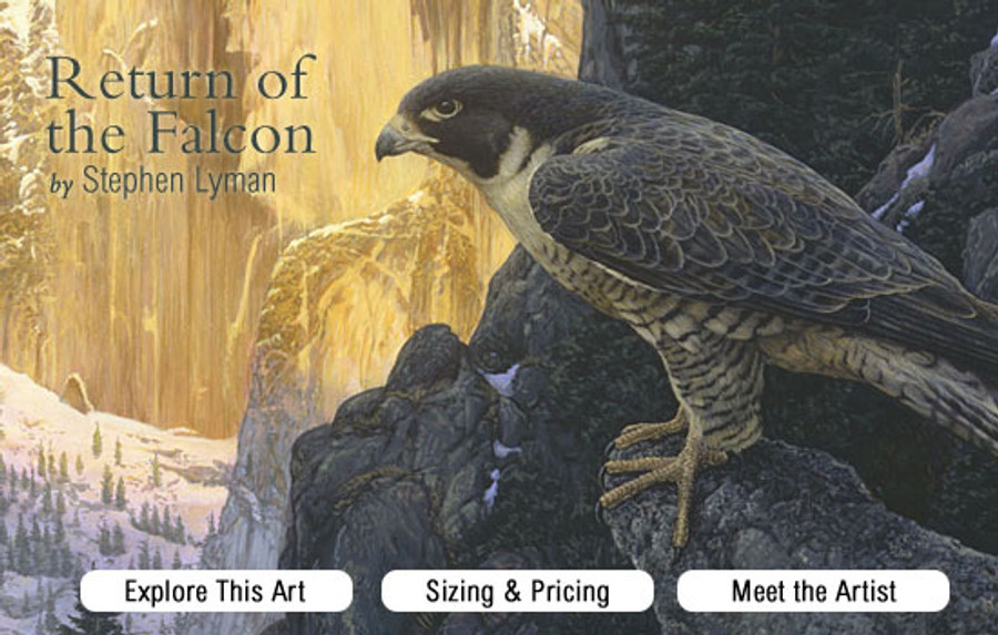 Return of the Falcon, Stephen Lyman ANNIVERSARY EDITION CANVAS