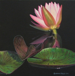 Water Lily Reflection Study by Leslie Macon
