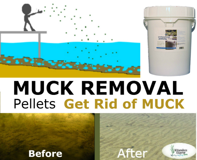 muck removal pellets to get rid of lake and pond bottom sediment on your beach
