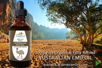 100% Pure Organic FULLY REFINED Australian Emu Oil 4oz by Tropical Holistic