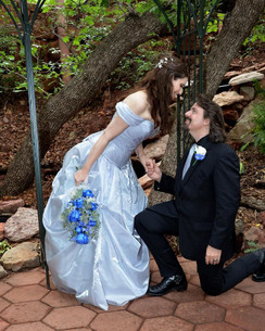 Silver roses Fairytale Wedding Gown