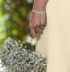 Dainty felicity diamante / cubic zirconia bracelet, lovely for petit sizes