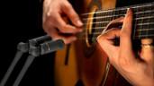 Sennheiser MKH 8040 Studio Cardioid Condenser Microphone