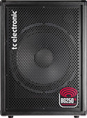"TC Electronic BG250-115 1 x 15"" Driver Bass Combo Amp"