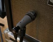 Telefunken M81-SH Dynamic Drum & Instrument Microphone