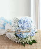 Hydrangea, Flowers Thailand