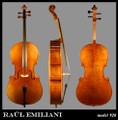 Raul Emiliani Model 928 Cello