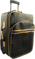 "20"" Pull Suitcase French Design"