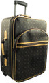 "24"" Pull Suitcase French Design"