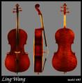 Eastman Master Series Model 605 Cello