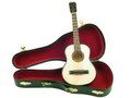 Mini Acoustic Guitar with Case 9""