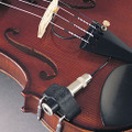 Fishman Classic Series V200 Professional Violin Pickup