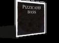Pizzicato Bass G String - Gut/Silver