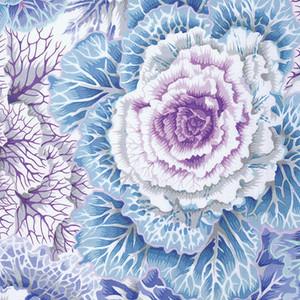 Brassica Philip Jacobs Colour: sky