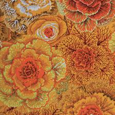 Philip Jacobs Brassica Colour: Brown