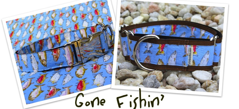 Fish Print Dog Collars!
