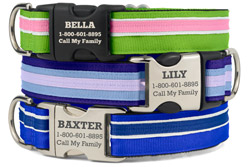 Personalized Original Stripe Dog Collars
