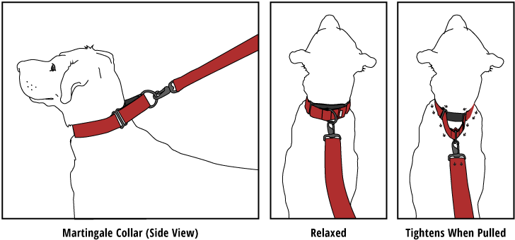 Trading strategy martingale collar