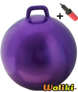 Hoppity Hop Ball Adult Size (plain purple)