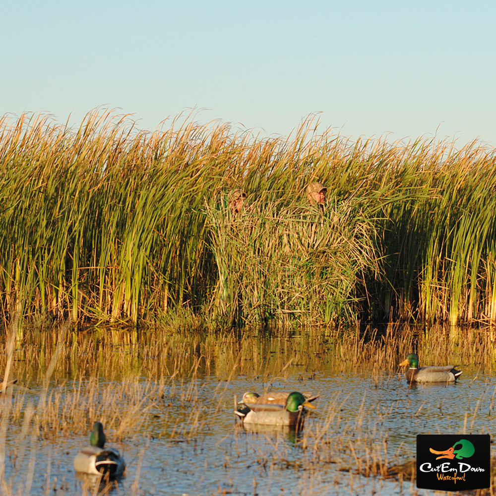 Avery Greenhead Gear Ghg Realgrass Real Grass Boat Blind
