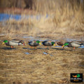 Full Body Feeder Mallards w/ Flocked Heads